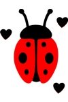 CLR Lady Bug